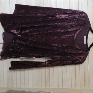 Another love velvet top in a lovely purple